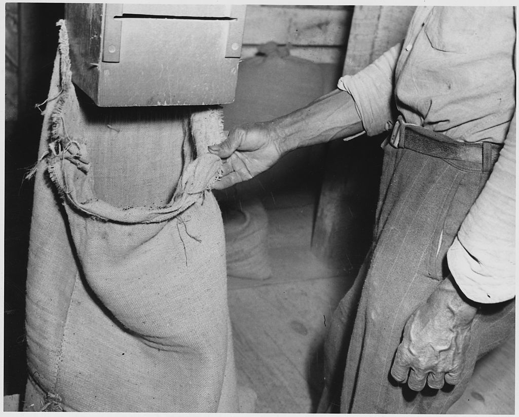 Newberry_County,_South_Carolina._Clean_seed_being_bagged_after_going_through_two_cleaning_machines_._._._-_NARA_-_522795