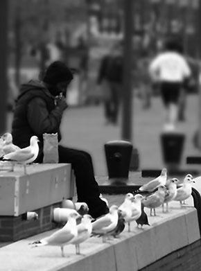 Feeding the Birds © 2015 by Jill Crainshaw