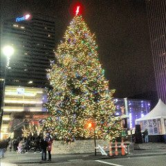 Christmas in Cincinnati. Photo courtesty of https://www.flickr.com/photos/fergy08/8214577385