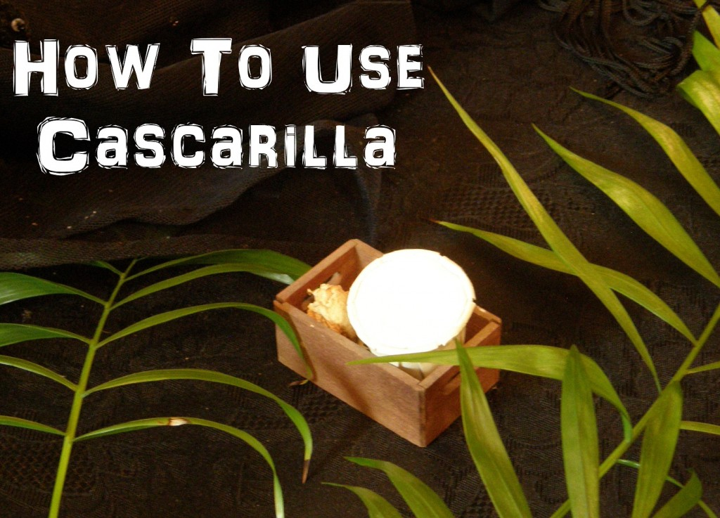 Cascarilla photo by Lilith Dorsey. Copyright 2015 all rights reserved.