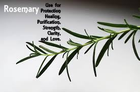 Magickal Uses of Rosemary image by pixabay. Text added.