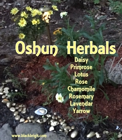 Oshun herbals photo by Lilith Dorsey. All rights reserved.