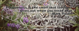 Lavender quote by Mark Twain. Photo by Lilith Dorsey. All rights reserved.