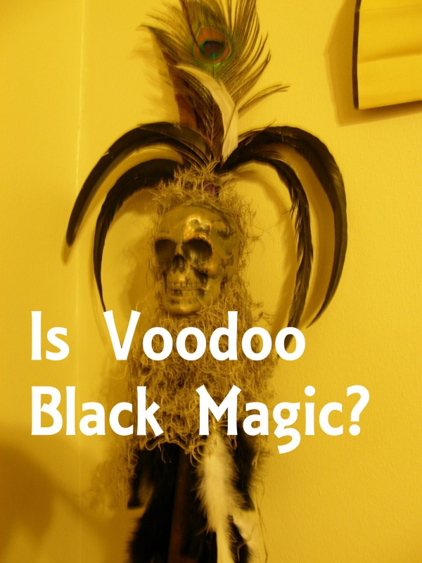 Voodoo Black photo by Lilith Dorsey. All rights reserved.