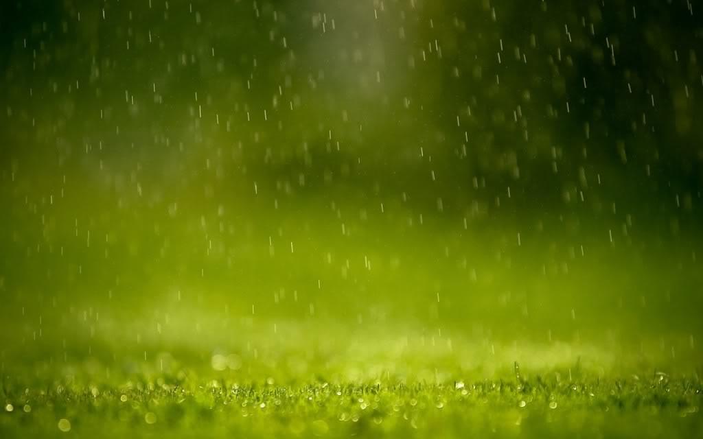 creative_wallpaper_green_rain_01917