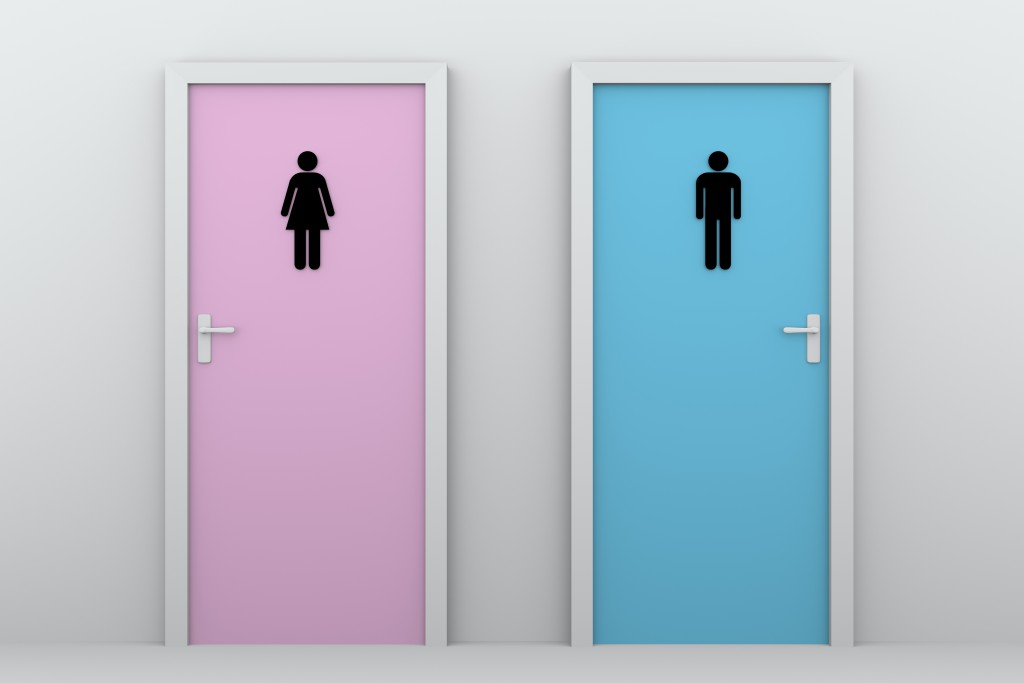 toilet doors for boys and girls. Male and female pictograms