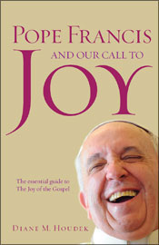 Here's a book about Pope Francis that I haven't read yet, but I love the cover.