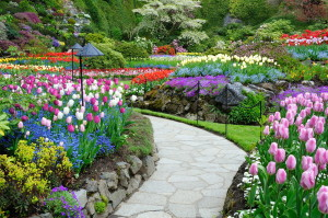 Contemplation is like a path through a beautiful garden.