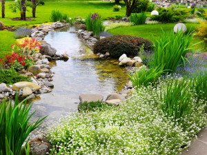 Like a gentle stream, mindfulness and contemplative prayer both seek clarity. Yet only prayer seeks the face of God.