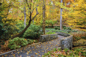 The Divine Office is a Path of Prayer (Photo: Georgia Botanical Gardens; courtesy of Shutterstock)