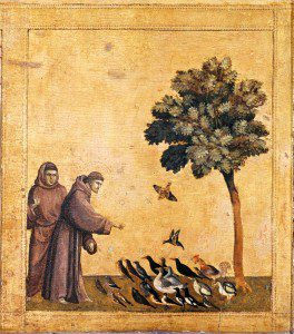 St Francis: Not Just for the Birds (Art by Giotto/public domain)