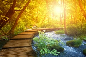 Mysticism is a path (image courtesy Shutterstock)