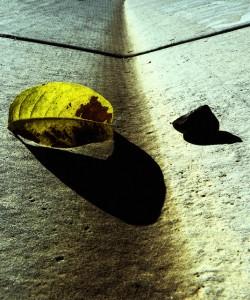 "In between … Photo: ""in the gutter"" by Len Matthews (Flickr/Creative Commons)"
