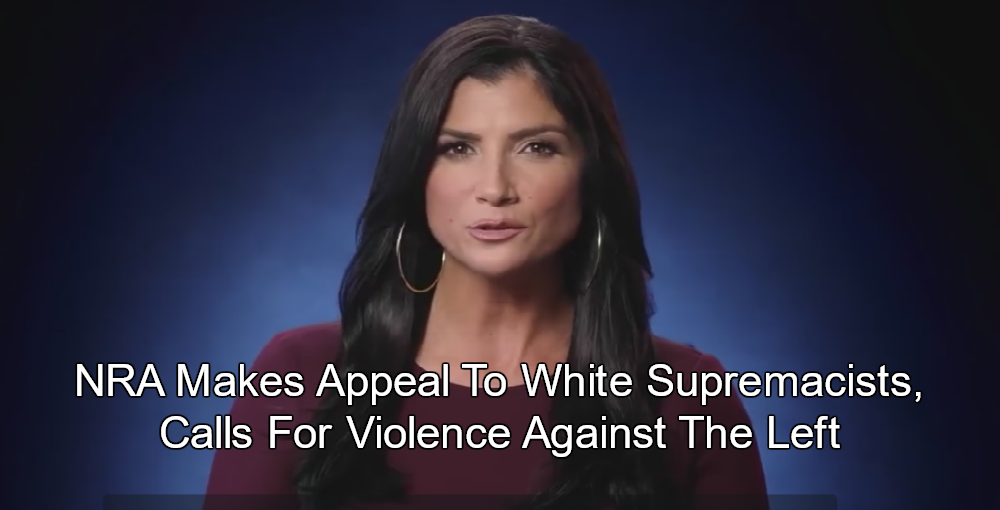 NRA spokesperson Dana Loesch (Image via screen grab)
