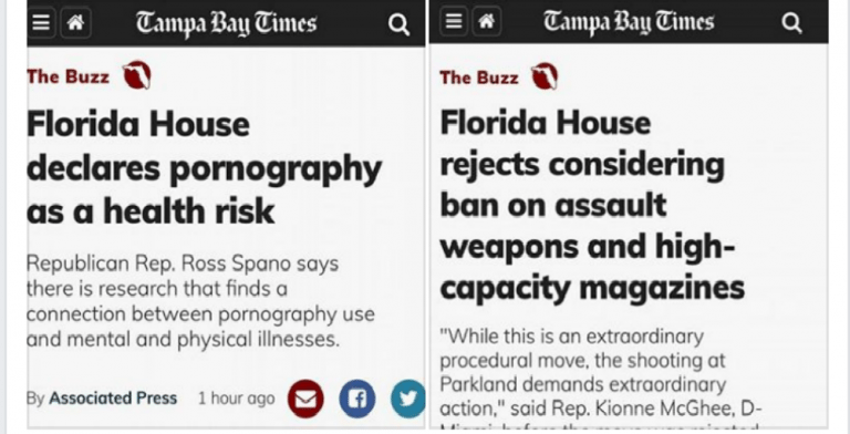 Florida House Refuses To Debate Guns But Declares Porn A Health Risk  (Image via Facebook)