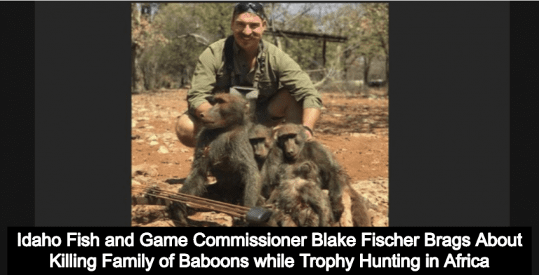 Idaho Wildlife Official Brags About Killing Family Of Baboons While Trophy Hunting (Image via the Idaho governor's office)