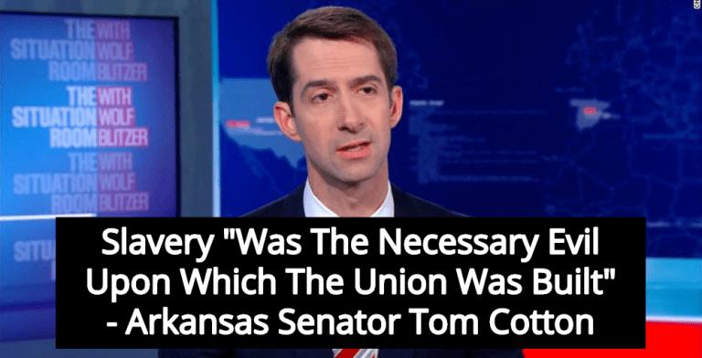 Senator Tom Cotton Roasted After Defending Slavery As 'Necessary Evil' (Image via Screen Grab)