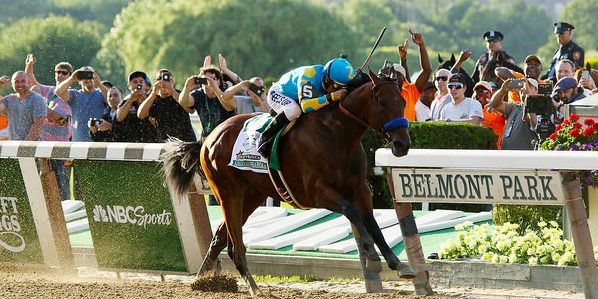 American Pharoah - 2015 Belmont Stakes (Flickr: Mike Lizzi, Creative Commons lisence)