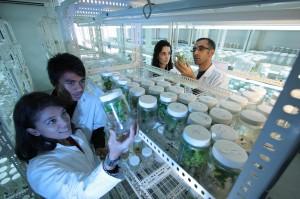 laboratory-385349_1280