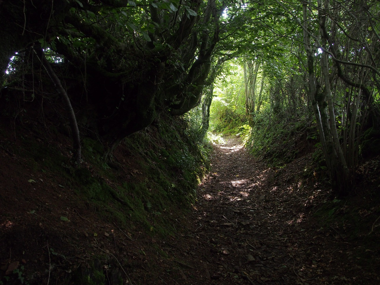 path-434296_1280