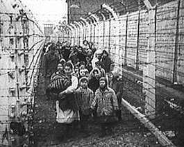 The liberation of Auschwitz.