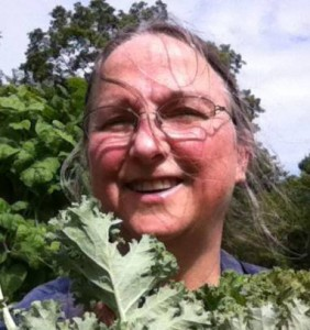The author harvesting kale.