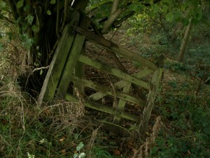 """Old Gate"" by mindgraph, Flickr C.C."