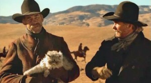 cowboys-herding-cats