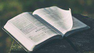 burden_bible01