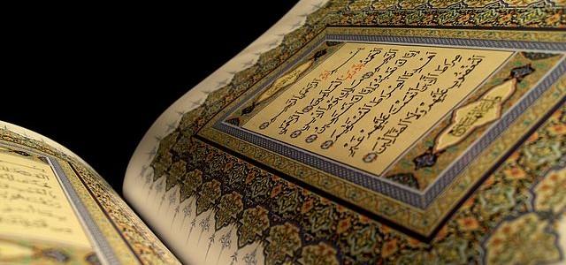 Image: Habib M'henni / Wikimedia Commons