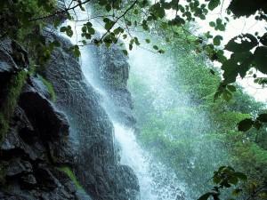 waterfall-954883_960_720