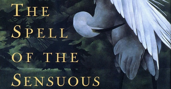 What does silence have to do with the sensuous? The books below explore this question.
