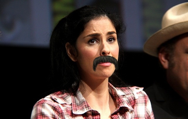 Due to copyright restrictions this is the best way I can reproduce Ms. Silverman's Emmy Stache Moment (Photo from Frlick, Taken by: Gage Skidmore, Subject: Sarah Silverman speaking at the 2012 San Diego Comic-Con, CC by 2.0).