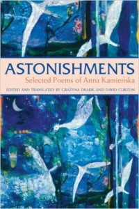 astonishments kamienska