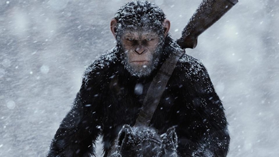 OK, so it's not as if Caesar worked particularly hard on his look. He came by his facial hair—and all the rest of his hair—honestly and naturally. Still, would Caesar have been as charismatic and intimidating without it? I think not. (Caesar in War for the Planet of the Apes, photo courtesy 20th Century Fox)