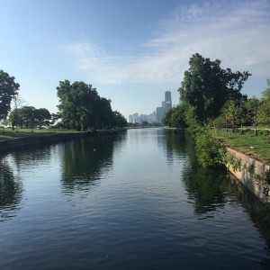 """Self-care in Nature —Lincoln Park"" (photo credit: Carl Gregg)"