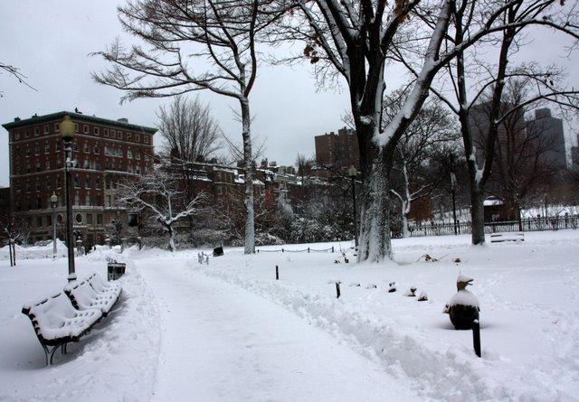 Boston Public Garden Snowfall, by Bill Ilott. Flickr Commons.