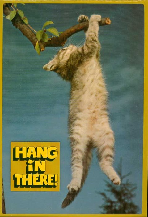 kitten-hang-in-there-poster
