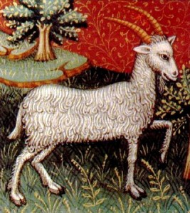 The moon will go direct in Capricorn at about 4 pm PST today. Zodiac images scanned from a medieval manuscript on astrology (15th century). Public domain image courtesy of Wikimedia Commons.