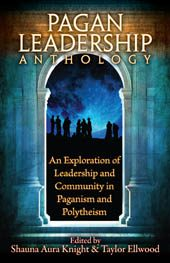 book_paganleadership_small