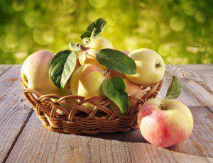 basket-with-apples-larisa-koshkina