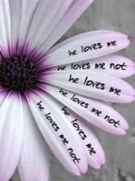 he-loves-me-he-loves-me-not