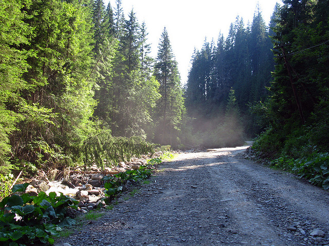"""Dirt Road,"" between Vorokhta and Hoverla base in Ukraine. (Credit: thisisbossi, Flickr, CC license.)"