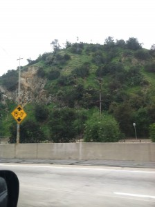 Description: a green hill with a freeway in the foreground.