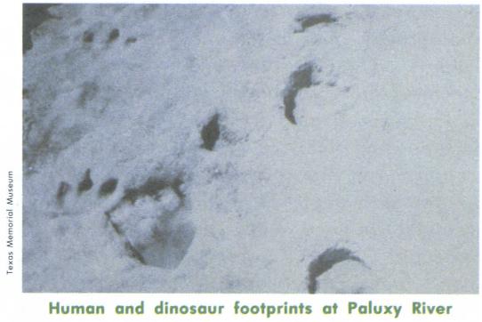Paluxy Tracks