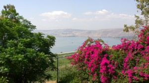 Photo: Marge Fenelon View of the Sea of Galilee from the Mount of the Beatitudes