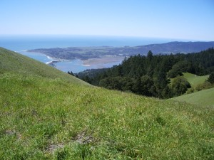 The Pacific Ocean viewed from the green grassy slopes of Mt. Tamalpais, Marin county, CA, USA. Photo by Barbara Newhall