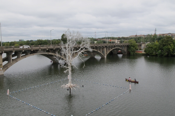 The Ghost Tree, part of a 2013 temporary art installation in Austin, Texas.  It's a dead tree painted white hovering over Lady Bird Lake. Photo by Barbara Newhall