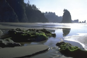 Olympic National Park, Wikimedia Commons
