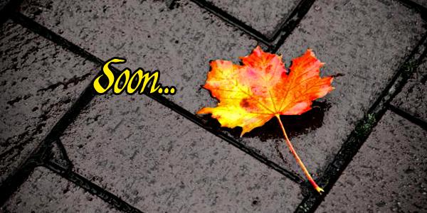 autumnomens